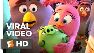 getlinkyoutube.com-The Angry Birds Movie VIRAL VIDEO - International Day of Happiness (2016) - Movie HD
