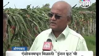 getlinkyoutube.com-Ramesh Pokarna's 'Dragon fruit' farming success story