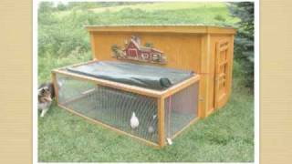 getlinkyoutube.com-Free Simple Chicken Coop Plans: Learn How To Easily Design and Build One Yourself