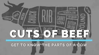 getlinkyoutube.com-How to Butcher/Process a Beef Carcass - Marksbury Farm
