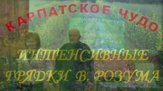 getlinkyoutube.com-Органические грядки (Б. А. Бублик)