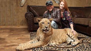 getlinkyoutube.com-'We Live With 220 Lions And Tigers': BEAST BUDDIES