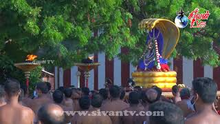 நல்லூர் ஸ்ரீ கந்தசுவாமி கோவில் 20ம் திருவிழா காலை சந்தான கோபாலர் உற்சவம் 13.08.2020