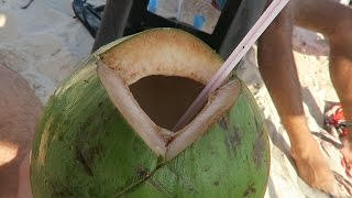 HOW TO EAT A COCONUT IN RIO