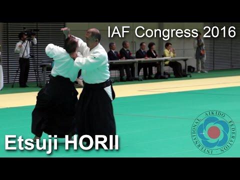 Demonstration by Etsuji Horii - 12th IAF Congress in Takasaki
