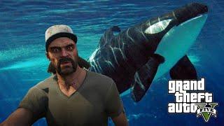 getlinkyoutube.com-GTA 5 - Hunting Every Animal In GTA 5 - Dolphin, Pugs, Whales, & More! (GTA V PS4 Gameplay)