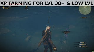 getlinkyoutube.com-Witcher 3 - XP farming for low lvl and beyond lvl 38