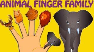 getlinkyoutube.com-Animal Finger Family - Nursery Rhymes For Children