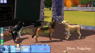 getlinkyoutube.com-[HOW-TO] Breed Dogs & Cats on Sims 3!