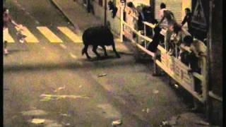 getlinkyoutube.com-Toro destroza el doble vallado y escapa en el 42 Encierro nocturno Nava de la Asunción