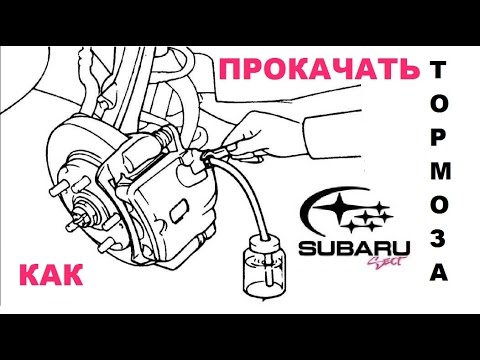 Где бачок тормозной жидкости в Subaru Плео