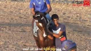 getlinkyoutube.com-سباق الغريفات شوط الخروف المتهم البسيوني و طريف  17/8/2012