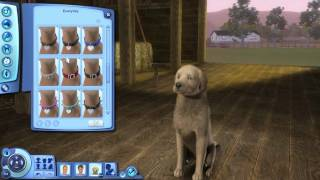 getlinkyoutube.com-Let's Play The Sims 3: Pets! [Part 2 -- Create a Pet]