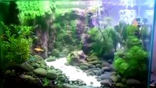 getlinkyoutube.com-Air Terjun Dalam Akuarium
