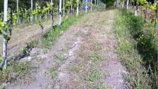getlinkyoutube.com-Lavorazione del terreno con ripper disco www.davideferrarese.it