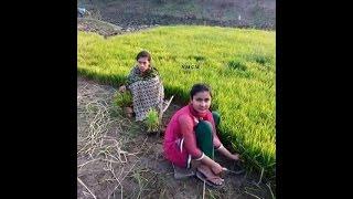 Wayanad  Girls Malayalam