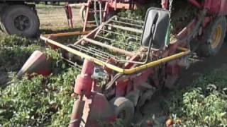 Raccoglitrice pomodoro Pomac Cosmo 45 - Tomato Harvester Pomac Cosmo 45