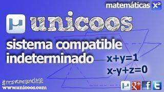 Imagen en miniatura para Sistema Compatible Indeterminado 03