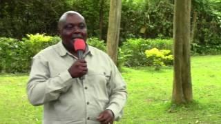 Wakulima wahimizwa kukumbatia kilimo mbadala Shirika la  VI Agroforestry