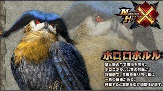 getlinkyoutube.com-MHX  ホロロホルル 弓 ブシド 0分針 ( Demo Hororohoruru )