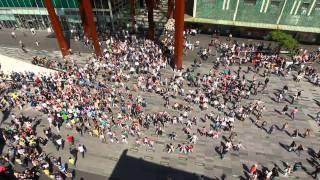 getlinkyoutube.com-Waka Waka Biggest flashmob in the Netherlands