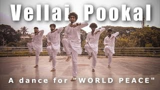 A dance for WORLD PEACE | Ravi Varma Choreography |