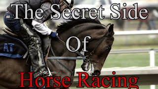 The Secret Side Behind Horse Racing