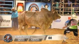 Rodeio de Umuarama 2015 - FINAL