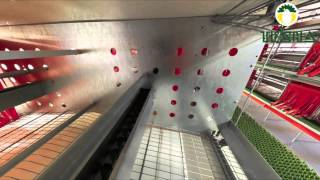 getlinkyoutube.com-Enriched colony systems for Laying Hens
