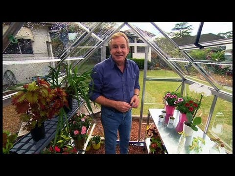 Gardening: Set up a greenhouse Ep 19 (07.06.2013)