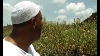 getlinkyoutube.com-Mohammed Awol Salah NEW Neshida   መሀመድ አወል ሳላህ  