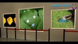 getlinkyoutube.com-شرح برنامج Photo 3D Album و كيفية عمل معرض للصور ثلاثي الأبعاد