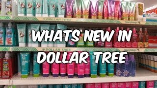 "getlinkyoutube.com-""Dollar tree stocked today  ...."