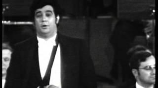 "getlinkyoutube.com-Mozart   DON GIOVANNI   ""Il mio tesoro"""
