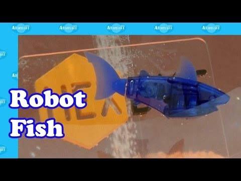 Aquabot Robot Fish by Hexbug