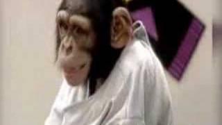 美男子とキスするはずが猿とキスするというドッキリ。