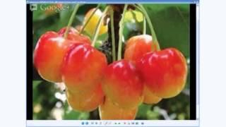 getlinkyoutube.com-عندي دواك  12/03/13