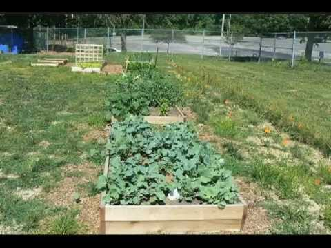 Home Plate Eco-Garden [video]
