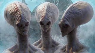 getlinkyoutube.com-【閲覧注意】もう地球にいるエイリアン8種(UMA・宇宙人・UFO)