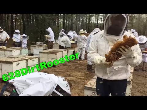 The Most Epic Beginner Beekeeping Workshop Ever - 628DirtRooster
