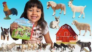getlinkyoutube.com-Schleich Blind Bags Farm Life - Learn Farm Animal Names and Sounds