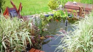 getlinkyoutube.com-Mon bassin de jardin préformé, poissons rouges, aménagement déco, plantes