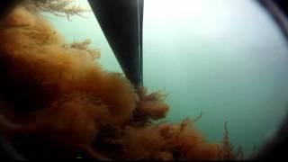 Подводная охота в Дагестане. Избербаш. Май 2011г.