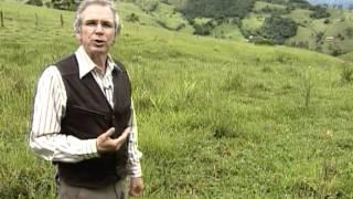 getlinkyoutube.com-Globo Rural - Série Água - Parte 1