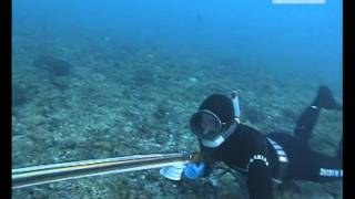 getlinkyoutube.com-Chasse Sous Marine - Australie