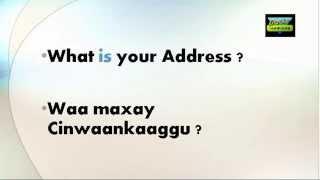 Learn English for Somali Speaker( Basic)