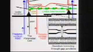 getlinkyoutube.com-Stuart Hameroff - How Does the Brain Produce Consciousness