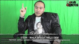 Stein - Walk Wid Di Tings Dem