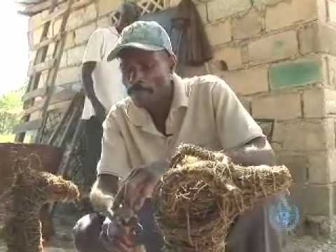 Yon Rudolphe ayisyen - HAITI