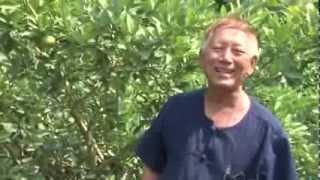 getlinkyoutube.com-รายการซอกแซก ตอน มะนาวจำรัสสวนเกษตรธนบุรี
